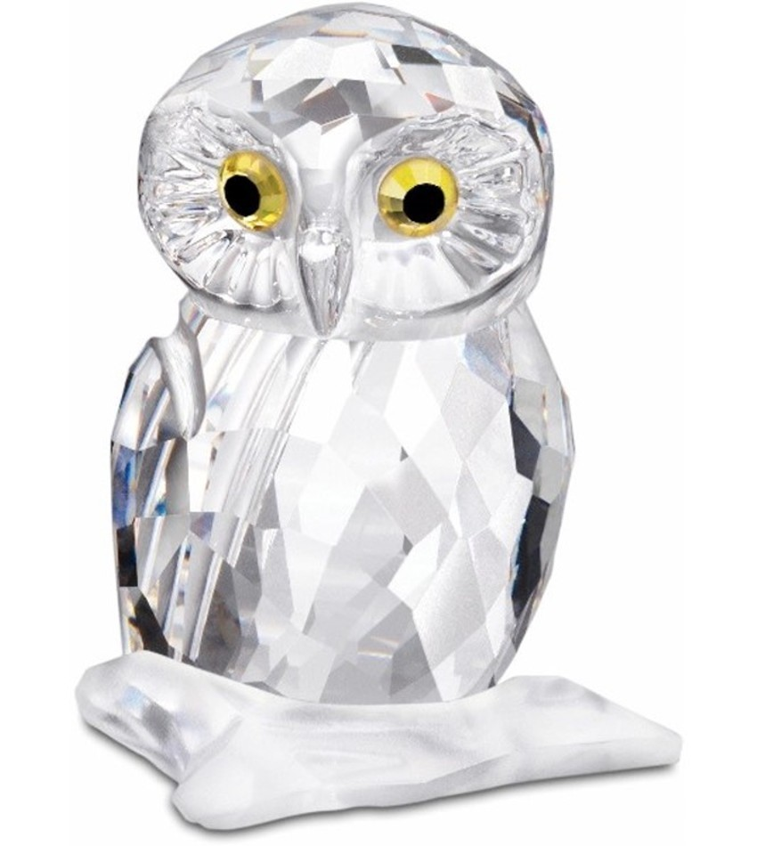 S1003319 - Owl, small