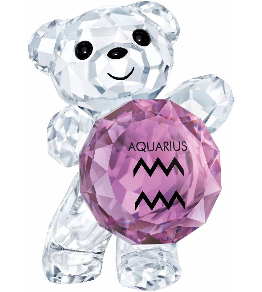 S5396292 - Aquarius - Kris Bear